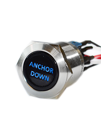 push button switch with custom led illumination, panel mount button